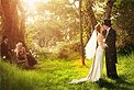 Wedding Photography Dreamlife Photos & Video