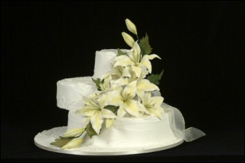 Major cake decoration supplies perth wedding pages australia junglespirit