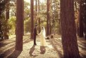 Wedding Photography Labyrinth art photography